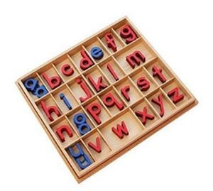 Montessori Toy - Small Wooden Movable Alphabet Toy Set